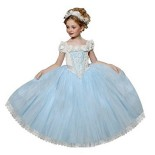 Robe princesse deguisement fille
