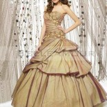 Robe de princesse adulte
